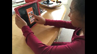 Staying mentally healthy during remote learning falls on parents, caregivers