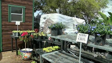 Largo landscaper finds innovative ways to attract business