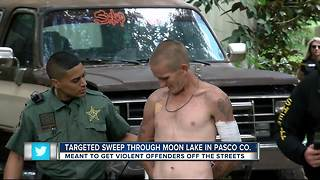 Targeted sweep through Moon Lake in Pasco Co. - Video
