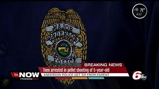 Anderson teen arrested for shooting 5-year-old in the back of a head with a pellet gun