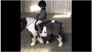 Little girl adorably rides her little pony - Video