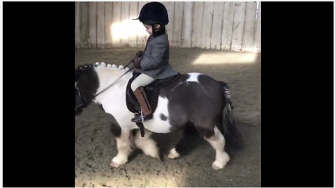 Little girl adorably rides her little pony