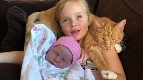 4-year-old sings 'You are my Sunshine' to 2-week-old sister and cat