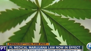 FL medical marijuana law now in effect - Video
