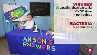 This 5-year-old genius can tell you all about the germs that can make you sick | Anson's Answers - Video