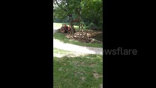 Man tries to fell tree with tractor. Tree wins. - Video