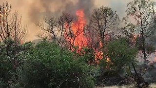 Fire Crews Battle Fast-Moving Detwiler Fire in Mariposa County - Video