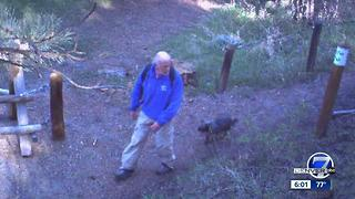 $18K trail signs for the blind stolen in Genesee Park - Video