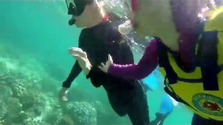 3-Year-Old Goes for First Snorkel at Great Barrier Reef - Video