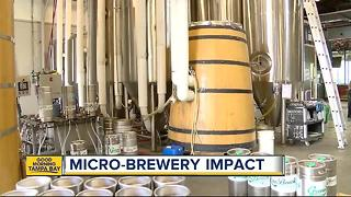 Study: Craft beer is saving small town economies - Video