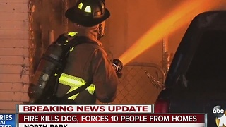 Fire kills dog, forces 10 people out of their homes - Video