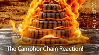The Camphor Chain Reaction!  - Video