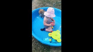 Cute Puppy and Baby playing in water