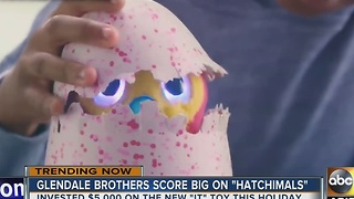 Glendale brothers making a killing in unlikely toy investment - Video