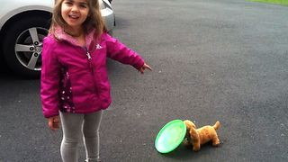 Girl Teaches Toy Dog To Fetch