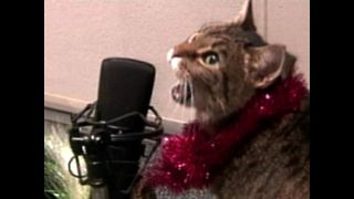 Animal Operas - Jingle Bells - Video