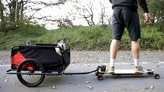 Skateboarding dog owner makes trailer for best friend