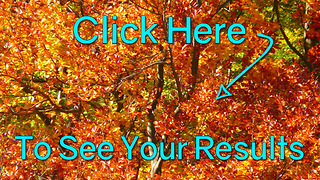 Take Our Test: Can You Tell Fall's Colors Apart? Poor Result - Video
