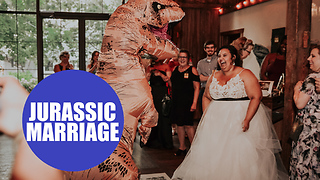 Dinosaur-loving couple throw epic Jurassic Park themed wedding
