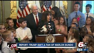 Trump isn't happy Vice President Pence brought his pets to D.C., according to report - Video