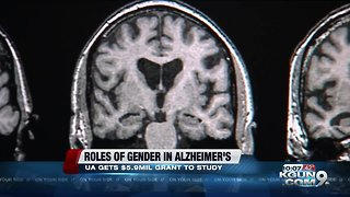 Arizona researcher awarded grant for Alzheimer's research