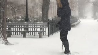 Thundersnow Rumbles in New York City - Video