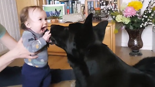 Baby And Doggy Make A Sweet Dynamic Duo