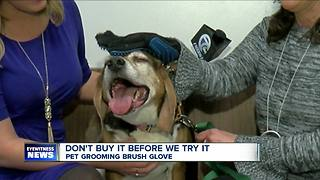Don't Buy It Before We Try It: Pet Grooming Brush Glove - Video