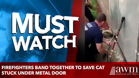 Firefighters Band Together to Save Cat Stuck Under Metal Door