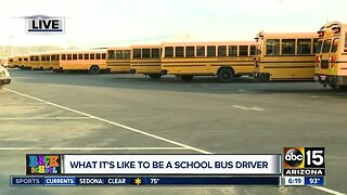 Kyrene School District hiring school bus drivers
