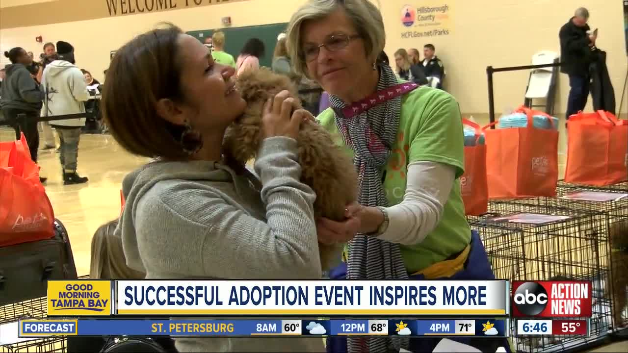 Successful adoption event in Hillsborough County inspires hope for more