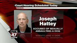 Court hearing for Hattey today - Video