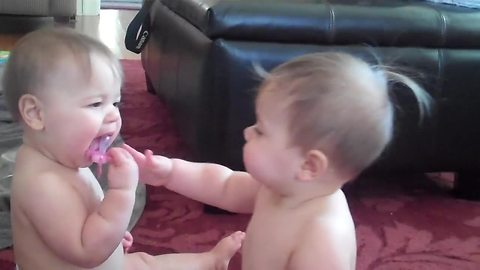 Twin Babies  Fight Over Their Favorite Pacifier