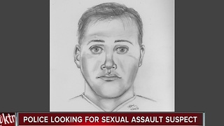 Police searching for man suspected of sexually assaulting young girl - Video