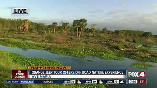 Orange Jeep Tours offers post Irma promotion - Video