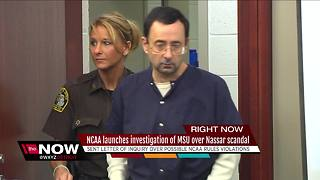 NCAA launches investigation into Michigan State University's handling of Nassar case