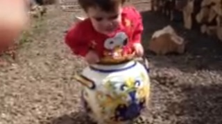 A Little Boy Gets Stuck In A Flower Pot - Video