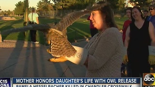 Bird released in honor of Chandler crash victim - Video