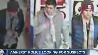 Amherst Police look for suspected purse thieves - Video