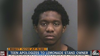Teen apologizes to lemonade stand owner