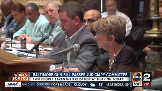 Amended gun bill passes judiciary committee