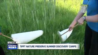 Summer camp at Tifft Nature preserve - Video