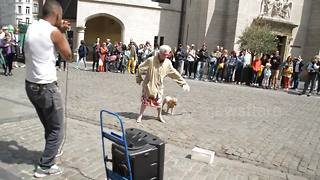 Elderly lady drops amazing dance routine to beatboxer - Video
