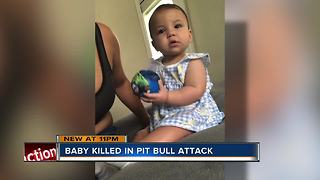 Florida infant, 8 months old, killed by family dog