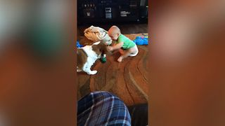 15 Reasons Why Dogs Are The Best Babysitters