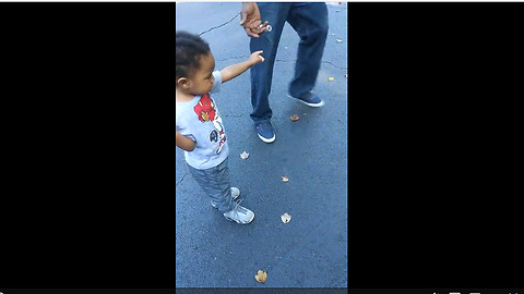 Toddler Has A Strange Fear Of Walking On Leaves