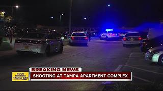 Tampa Police investigating double shooting at Tzadik Oaks Apartments - Video