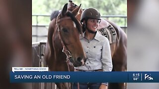 Local woman saves horse from slaughter