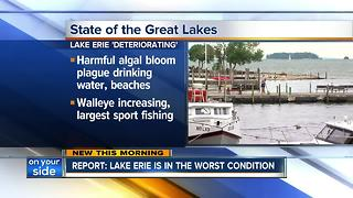 State of the Great Lakes study 2017 - Video