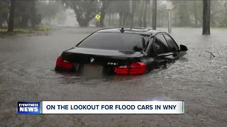 Cuomo: look out for flood damaged cars in NYS - Video